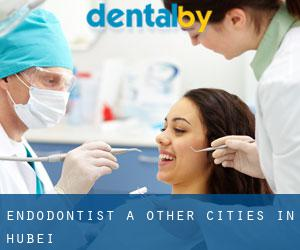 Endodontist à Other Cities in Hubei
