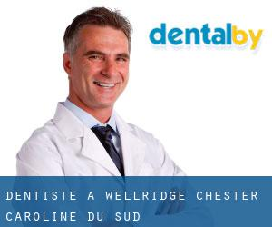 Dentiste à Wellridge (Chester, Caroline du Sud)
